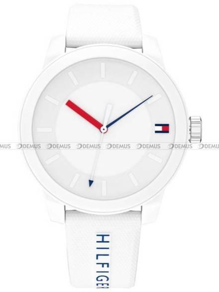 Zegarek Męski Tommy Hilfiger Denim 1791743